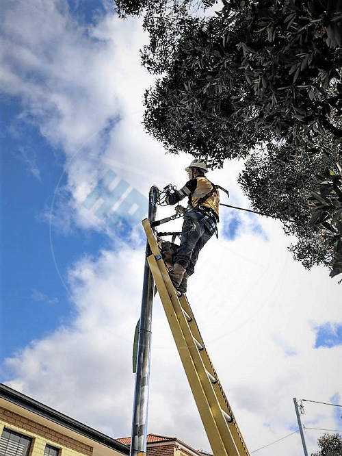 private power pole installation Level 2 Electrical Sydney